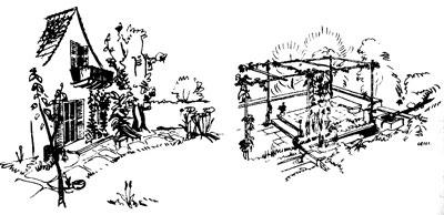 примеры оформления садового участка