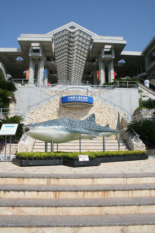 аквариум в Японии